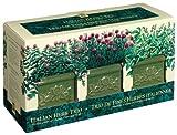 #10: Garden At Home - Italian Herb Trio