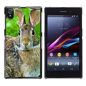 Carcasa Funda Case// Rabbit V0000013 //Sony Xperia Z1 L39H