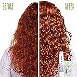 BIOLAGE Hydrasource Shampoo For Dry Hair, 33.8 Ounce