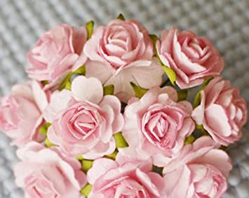 Amazon 100 pcs hight quality pink color 002 mulberry paper amazon 100 pcs hight quality pink color 002 mulberry paper flowers of wedding roses 20mm mightylinksfo