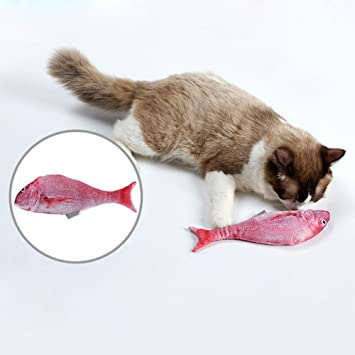 Starter juguete de pez gato - juguetes de hierba gatera, felpa de simulación 3D con juguete de gato de repuesto, para gatos/perros: Amazon.es: Productos ...