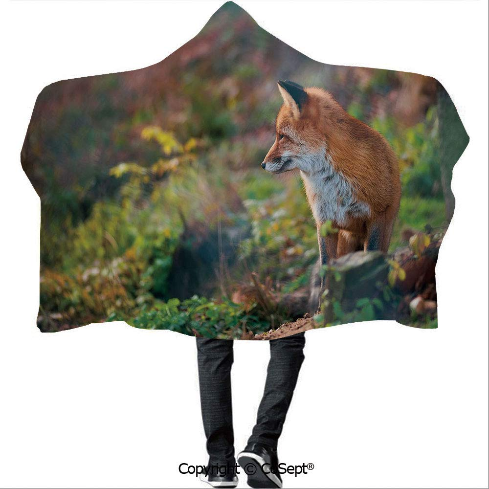 AmaUncle Hooded Blankets,Young Red Fox Listening to Something in Woodland Forest Wildlife Predator Decorative,Warm Cozy Throw Blanket (59.05x78.74 inch),Light Brown White Green