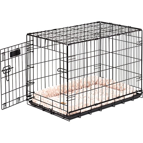Precision Pet ProValu Single-Door Dog Crate in Black