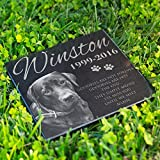 Personalized Dog Memorial With Photo Free Engraving MDL1 Customized Grave Marker | 12x12