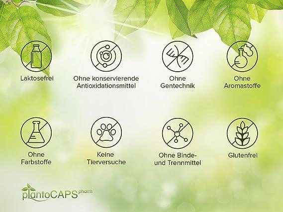 plantoCAPS® shyX PREMIUM | Remedio natural para la normalización de la función mental (estimulante), la reducción de la fatiga (cansancio extremo) y el ...