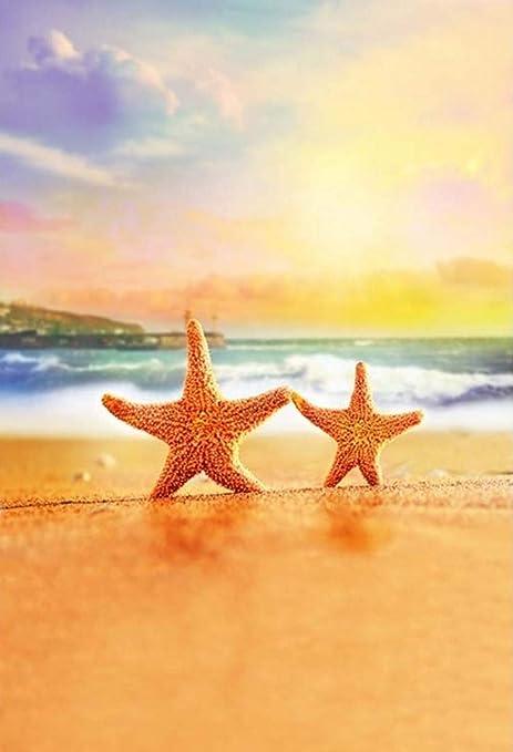 01157c52b2 Amazon.com   Gardenia 5x7ft Summer Sunset Sea Beach Starfish Theme ...