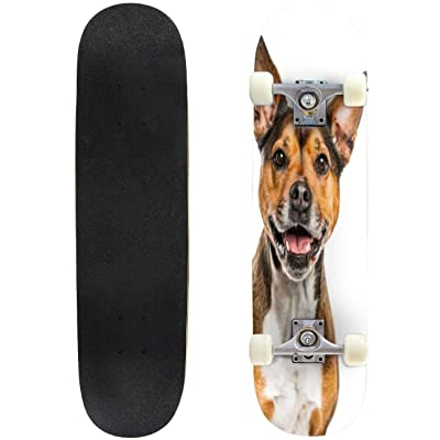 "Ship Bow Close ups and Pictures Outdoor Skateboard 31""x8"" Pro Complete Skate Board Cruiser 8 Layers Double Kick Concave Deck Maple Longboards for Youths Sports : Sports & Outdoors"