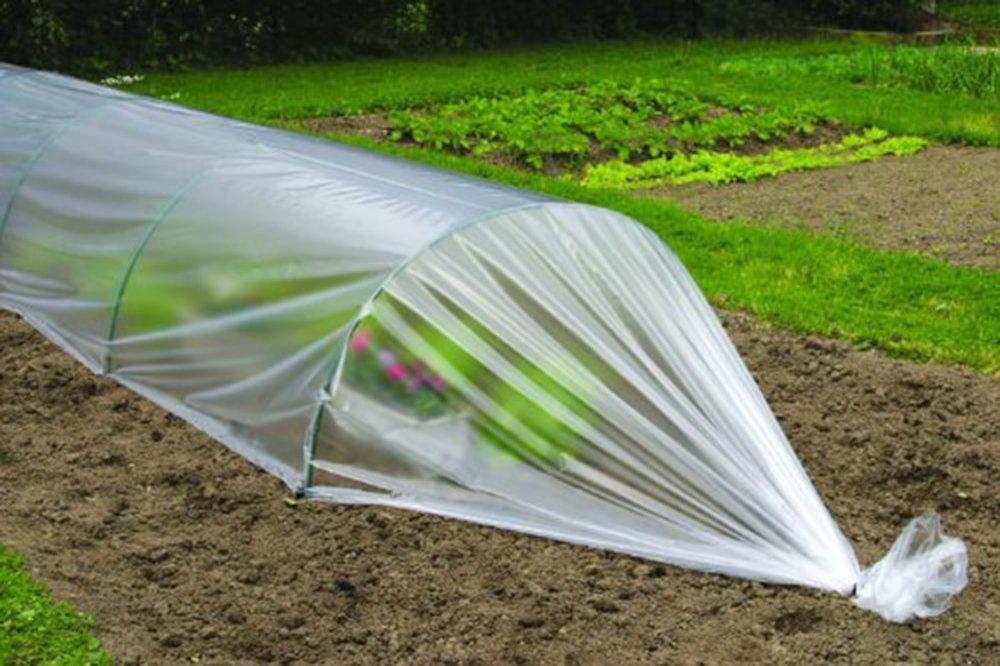 Apollo Film Grow Tunnel Kit Apollo Gardening Ltd VDTAZ012