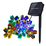 Amazon Price History for:Innoo Tech Solar String Lights Outdoor Flower Garden Light 21ft 50 LED Multi Color Blossom Lighting for Christmas, Garden Indoor Wedding Party Decoration Patio Light RBG Fairy