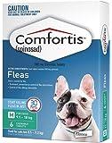 Comfortis Pet Meds Chewable Tablet for Dog, Green