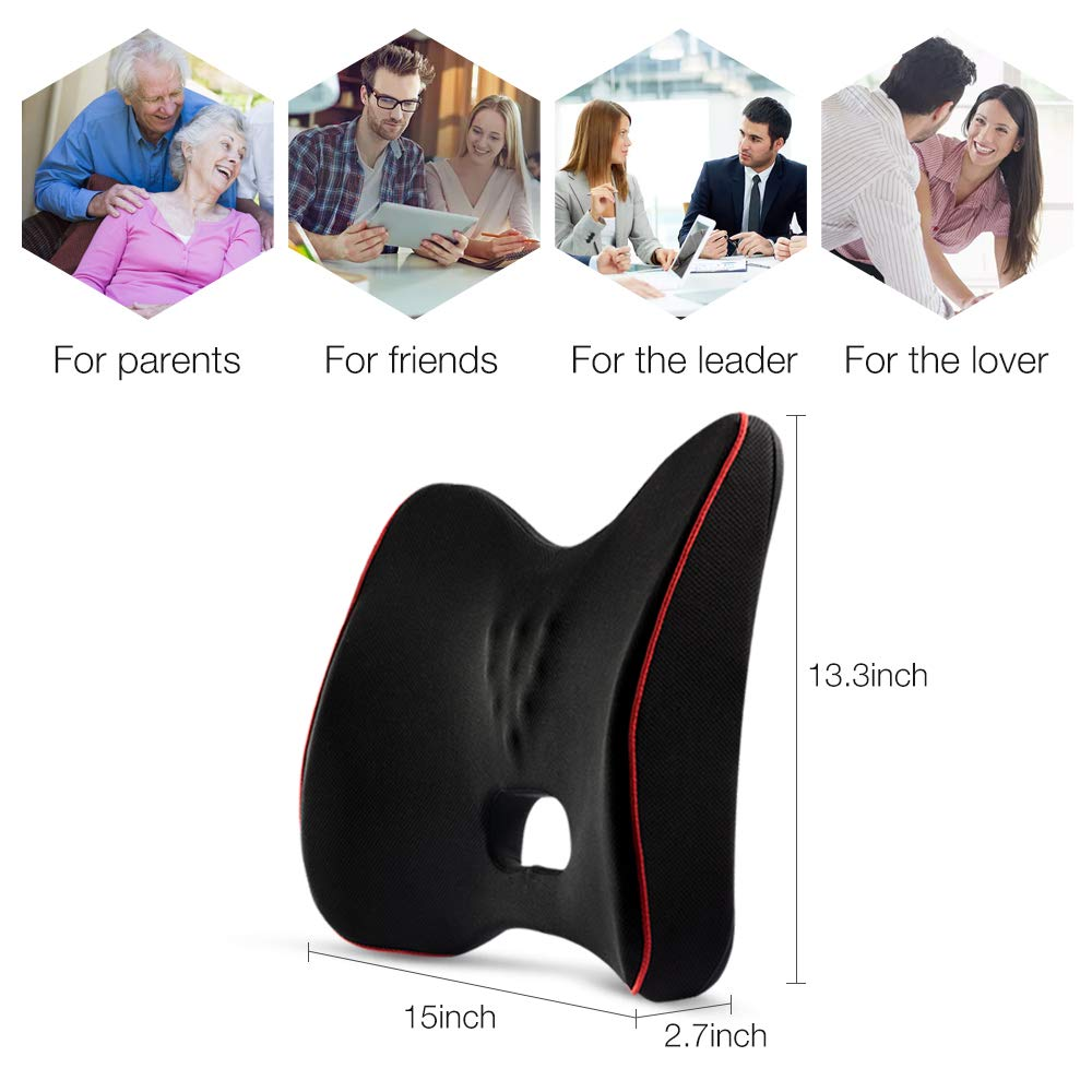 QUEES Memory Foam Lumbar Support Back Cushion with Mesh Cover Balanced Firmness Designed for Lower Back Pain Relief- Ideal Back Pillow for Computer Office Chair Car Seat Recliner