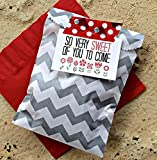 Outside the Box Papers Chevron Treat Sacks 5.5 x 7.5 48 Pack Silver, White, Coral