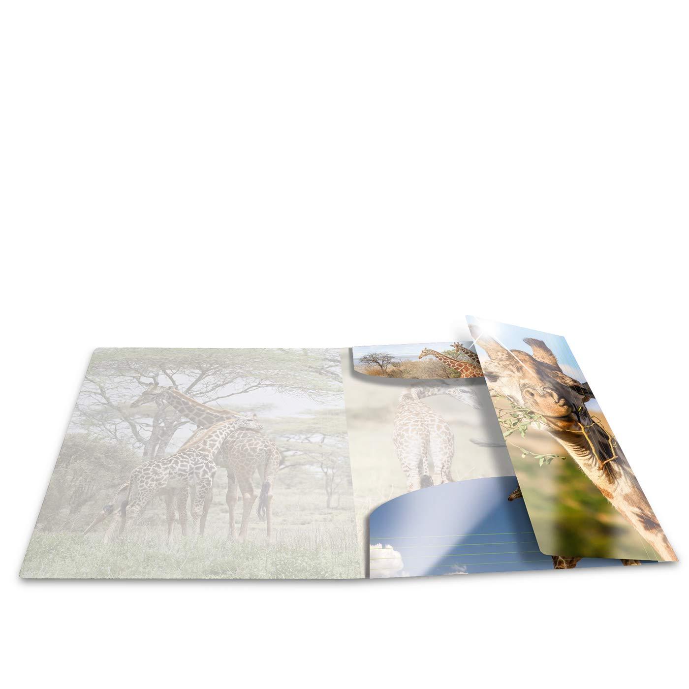 serie Animali motivo: cane segno Mappe Con con elastici in gomma con stampa interna HERMA 19327/patinati Sammelmappe DIN A4 1/pezzi in plastica