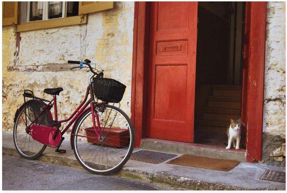 QNJY Adultos Juego Creativo Rompecabezas Bicicleta Vintage y Gato en la Calle niños 1000 Piezas Rompecabezas 70x50cm DIY 3D: Amazon.es: Hogar