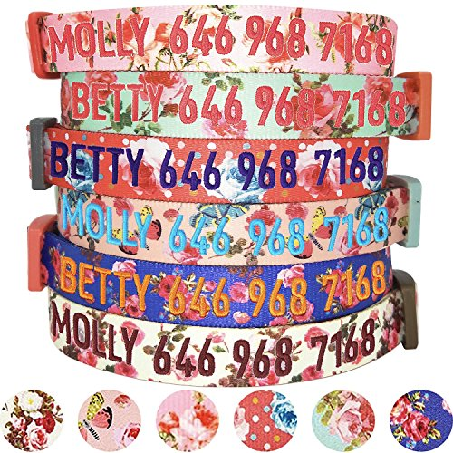 Blueberry Pet 6 Patterns Personalized Safety Training Martingale