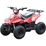 110cc ATV Four Wheelers Fully Automatic 4 Stroke Engine 6 Inch Tires Quads for Kids Spider Burgundy