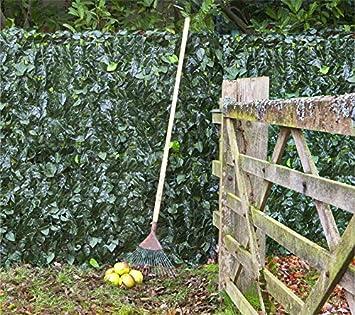 Artificial Ivy Leaf Screening Hedge 3m X 1m (9ft 10u0026quot; X 3ft 3u0026quot;