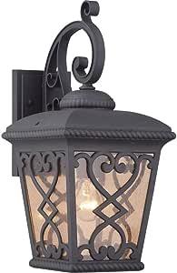 Quoizel FQ8409MKFL Fort Quinn Outdoor Lantern