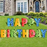 VictoryStore Yard Sign Outdoor Lawn Decorations: Happy Birthday Letters Yard Card, Set of 13 with Stakes