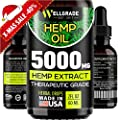 Hemp Oil for Pain & Anxiety Relief – 5000 MG – Premium Seed Grade – Natural Hemp Oil for Better Sleep, Mood & Stress – Pure Hemp Extract – Vitamins & Fatty Acids – Made in The USA