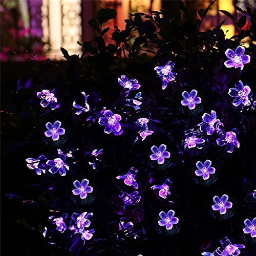JTW - Waterproof & Adjustable IP65 21ft 50 LED Purple Blossom light Decorative Gardens Solar power Fairy String Lights Outdoor For Home, Lawn, Garden, Wedding, Patio, Party and Holiday Decor (Purple)