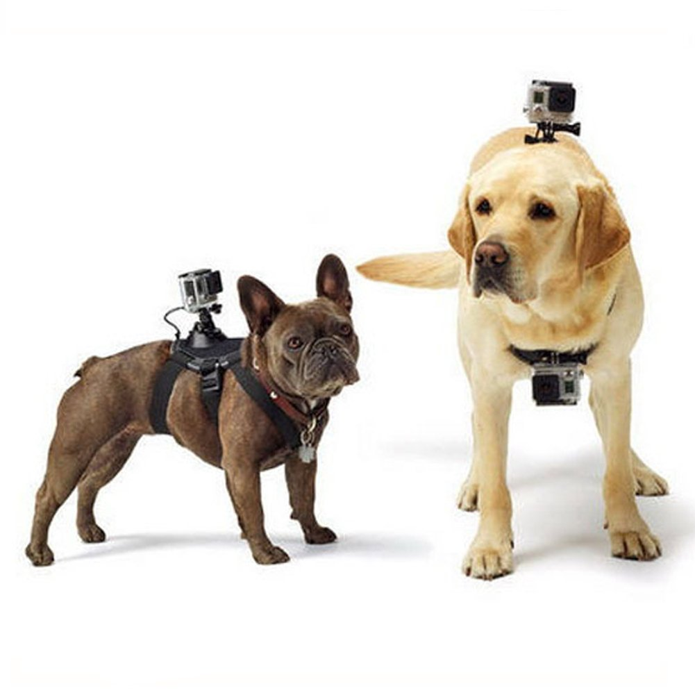 Black HNYG Dog Harness Mount Chest Strap Mount for GoPro Hero 4/3+/3/2/1, Suitable for Dogs From 15 to 120 LBS A557