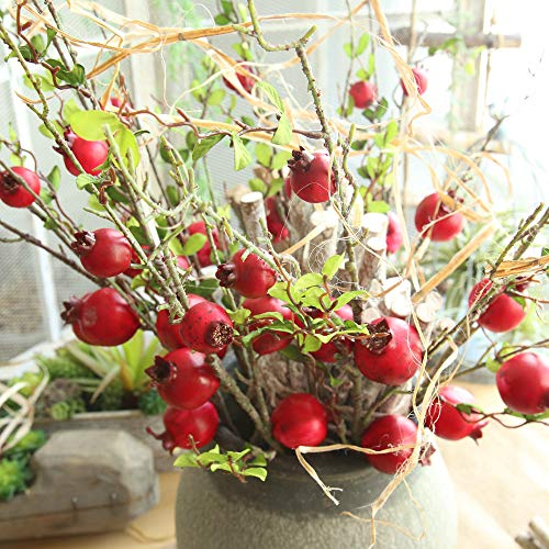 Artificial flower,Fake Rose Fruit Pomegranate Berries Bouquet Long Dry Branch Floral For Garden Home Decor (Red) by MaxFox (Image #4)