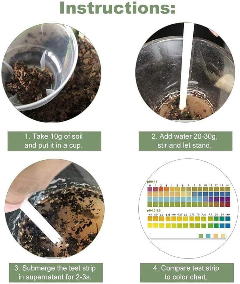 Garten FILWO 100 St/ück Bodenteststreifen Bodentest-Kit pH-Streifen zum Testen von Boden Rasen Bauernhof Haus Pflanzen Urintest Kosmetik-pH Lebensmittel-pH-Test