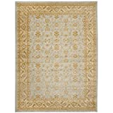 Safavieh Austin Collection AUS1620-7920 Light Grey and Gold Area Rug, 8 Feet by 11 Feet