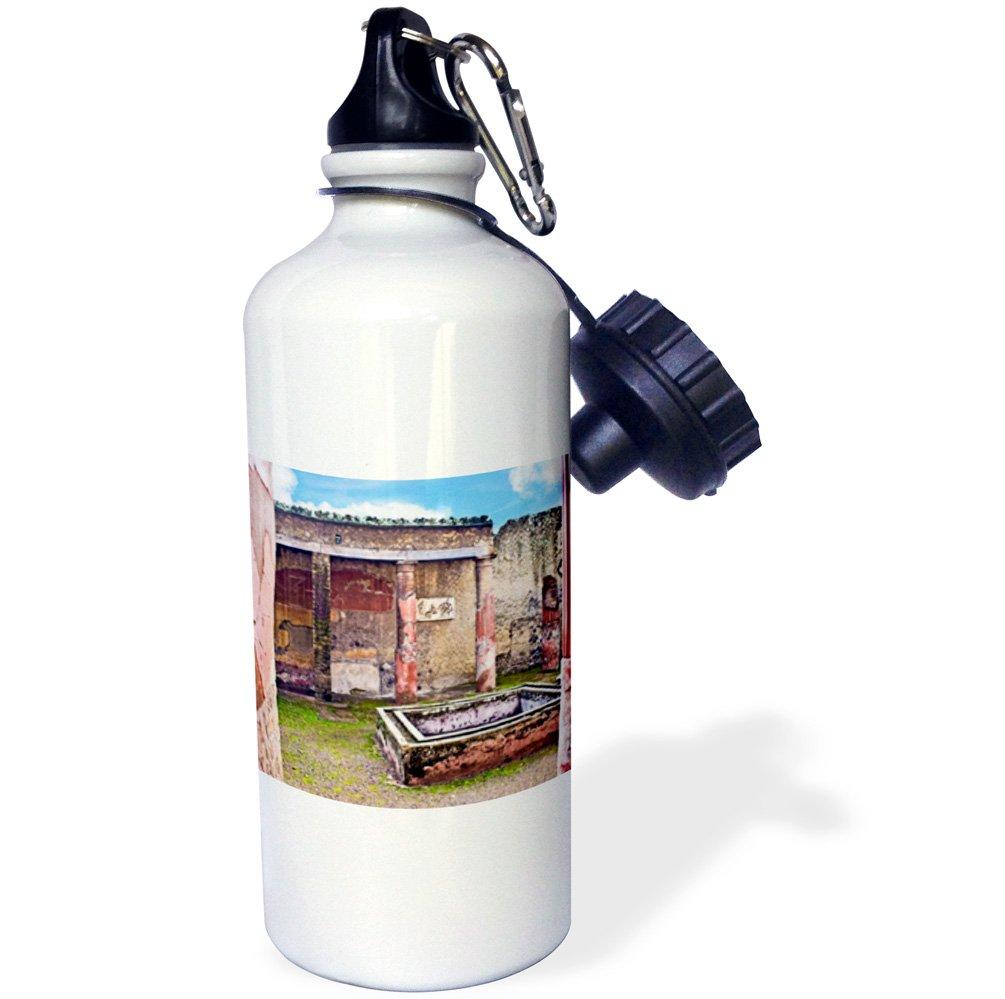 3dRose wb_137771_1 ''Atrium of House, Herculaneum ruins, Naples, Italy EU16 MGL0087 Miva Stock'' Sports Water Bottle, 21 oz, White