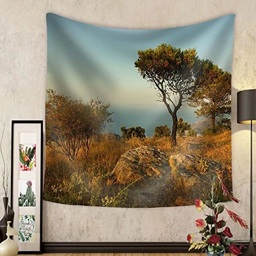 Niasjnfu Chen Custom tapestry Spain Beach - Fabric Wall Tapestry Home Decor by Niasjnfu Chen
