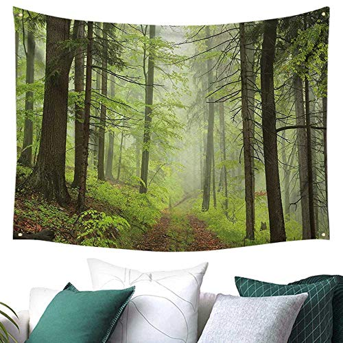 WilliamsDecor Outdoor Tapestry for Bedroom Trail Trough Foggy Alders Beeches Oaks Coniferous Grove Hiking Theme Gift for Sheet/Blanket 84W x 70L Inch Pale Green Pale Yellow