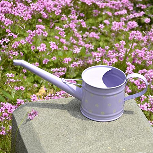 Hot Calunce Handmade 600ML beautiful polka dots watering pot (Purple) for sale