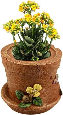 Estatua del jardín Maceta vintage Plantas suculentas Maceta Maceta Caja de almacenamiento Decoración de jardín en casa para patio interior al aire libre (Color : Retro , tamaño : 16*13*13cm) : Amazon.es: Hogar