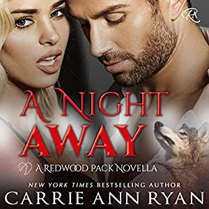 A Night Away Audiobook