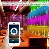 Miheal LED Light Strip, Wifi Wireless Smart Phone