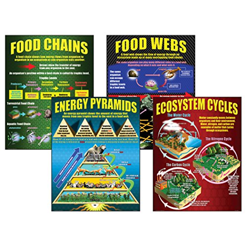 McDonald Publishing MC-P059 Ecosystems Teaching Poster Set (Environmental Science Activities For High School Students)