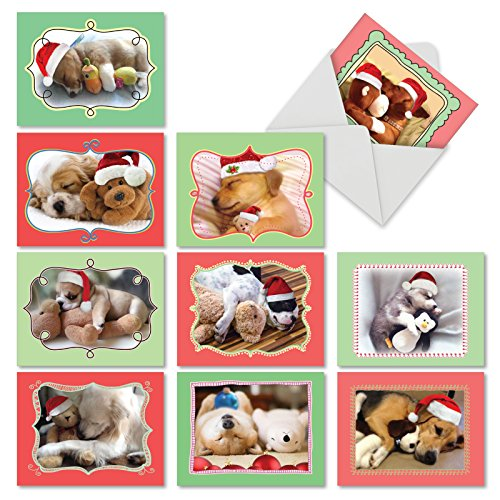 Christmas Cuddle Buddies' Holiday Greeting Cards, Boxed Set of 10 Snuggly Christmas Puppies Holiday Notes 4 x 5.12 inch, Cute Sleepy Pups Christmas Cards, Napping Dogs with Toys Cards ()