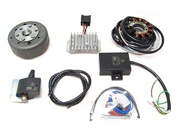 powerdynamo sistema de encendido Estator BMW R27 DC sistema: Amazon.es: Coche y moto