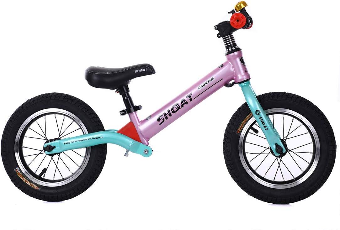 Bicicleta de Equilibrio de Hierro de 12