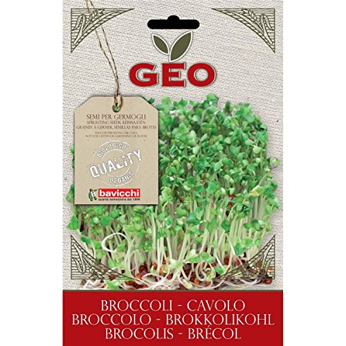 Desertcart Ae Geo Buy Geo Products Online In Uae