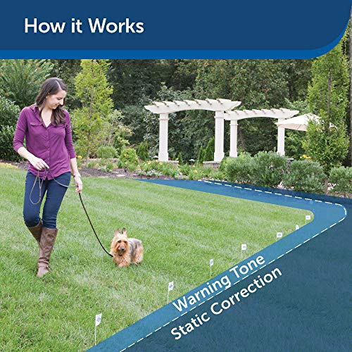 PetSafe Basic In-Ground Dog and Cat Fence – from the Parent Company of INVISIBLE FENCE Brand – Underground Electric Pet…