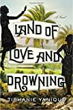 Land of Love and Drowning: A Novel