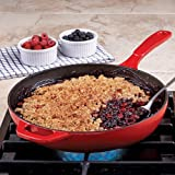 Search : Lodge Color Enameled Cast Iron Skillet, 11-Inch