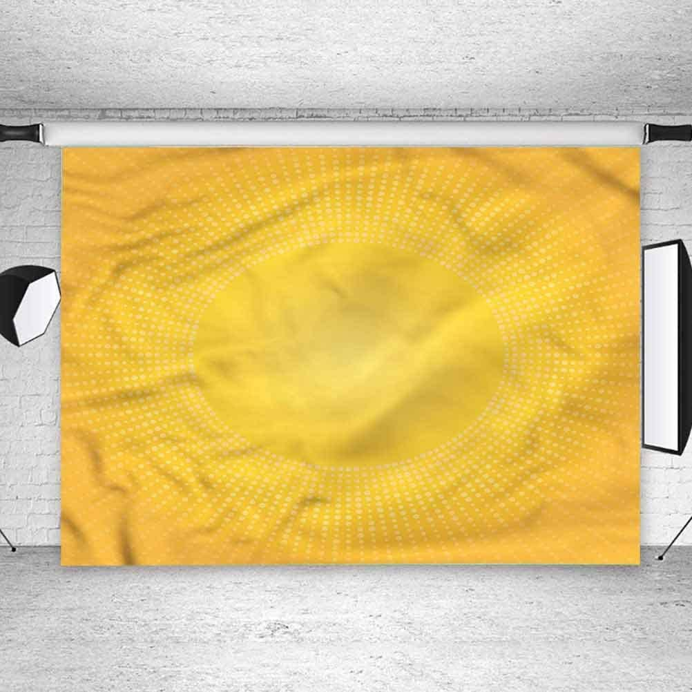 5x5FT Vinyl Backdrop Photographer,Yellow,Modern Sunshine Circle Background for Party Home Decor Outdoorsy Theme Shoot Props