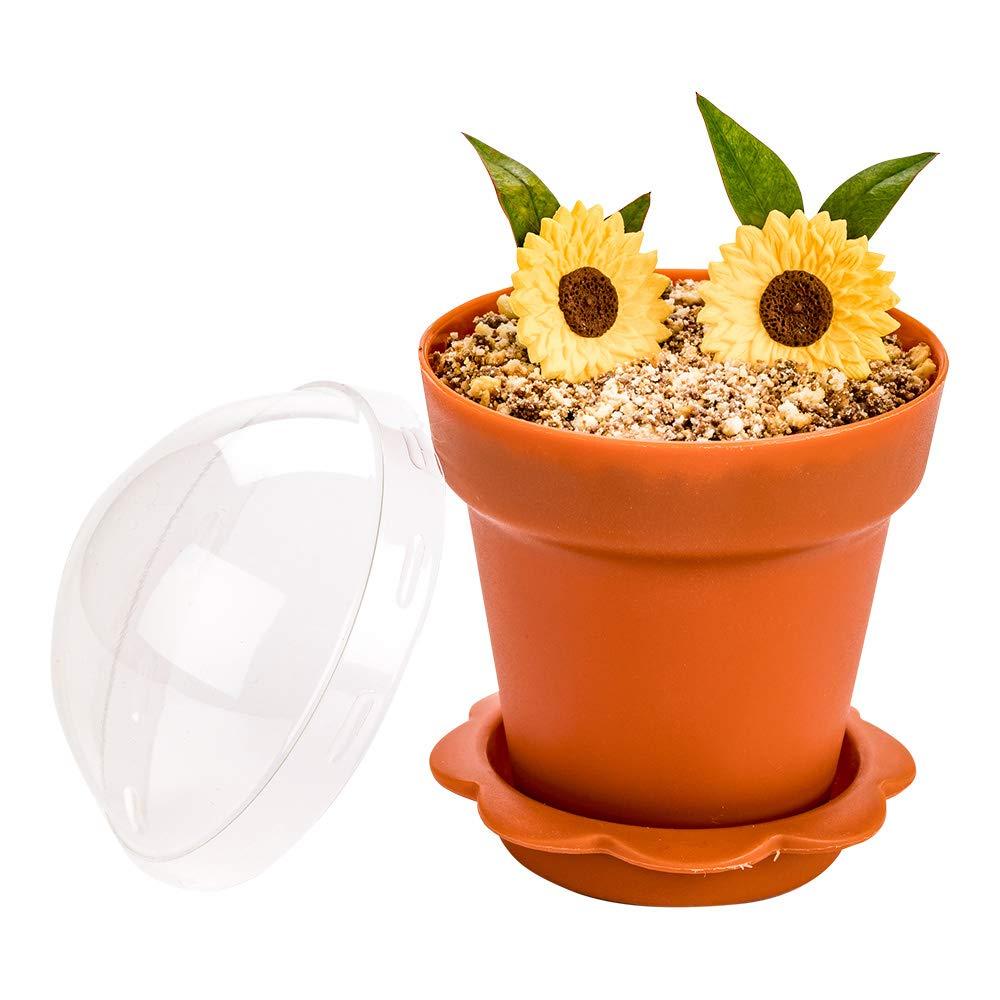 Restaurantware RWP0443BR 6 oz Terracotta Plastic Mini Flower Pot Cup with Lid 3 x 3 x 3 100 count box 6 ounces,