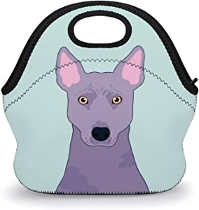 HEVANE Lunch Tote Bags, Thai Ridgeback Dog Reusable Insulated Tote Handbag Lunch Box Food Container, Durable Multi-function Waterproof Lunch Bag for Women Men Boys Girls