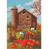 Fall Barn Scene – Standard Size 28 Inch X 40 Inch Decorative Flag For Sale