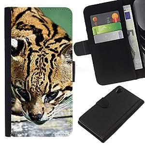 KingStore / Leather Etui en cuir / Sony Xperia Z2 D6502 / Ocelot felino cazador lindo gato grande salvaje