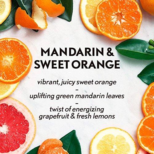 AIR WICK Essential Mist Refill, Mandarin & Sweet Orange 1 ea (Pack of 6) by Air Wick (Image #2)